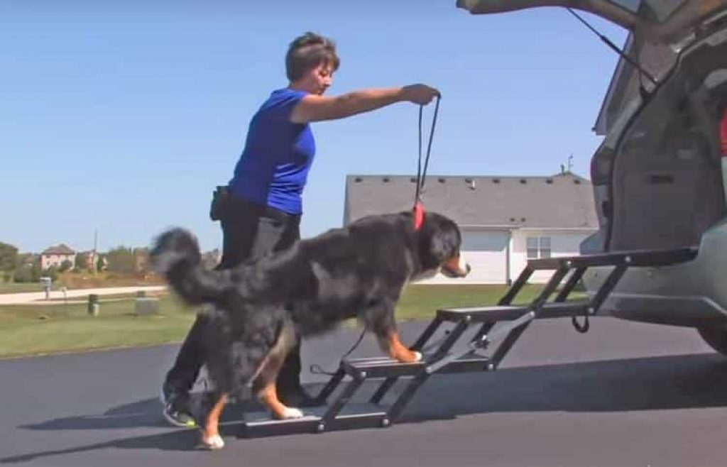 Pet Loader: Get Your Pet In and Out of Your Vehicle Safely