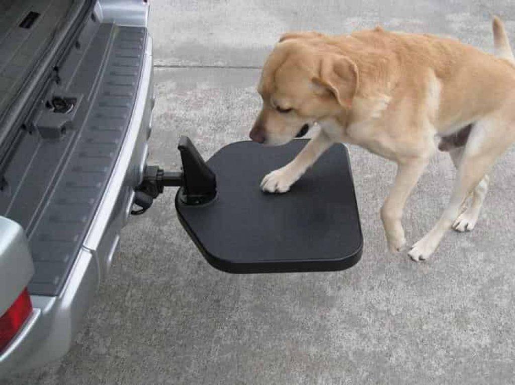 Dog Hitch Step